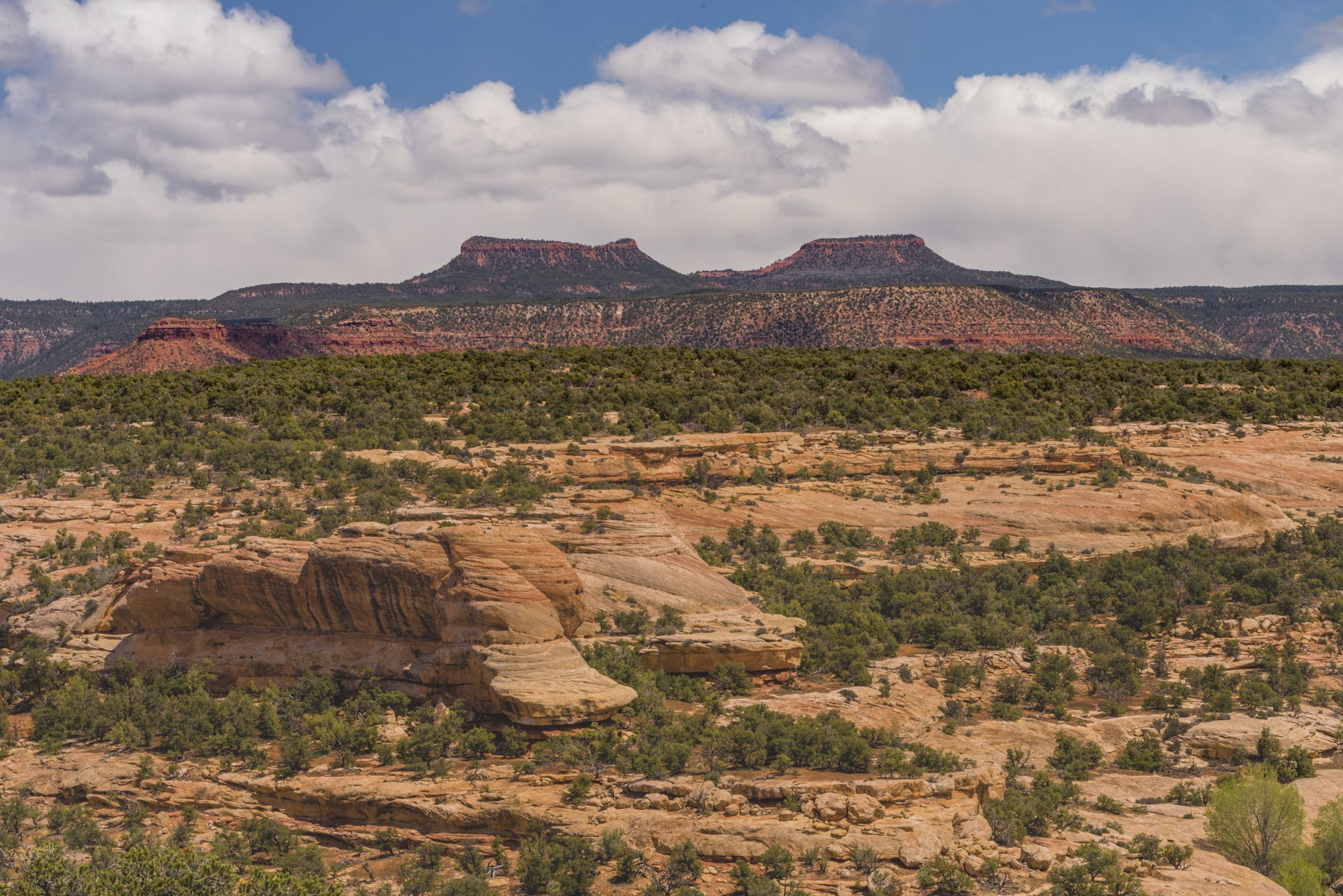Bears Ears Buttes (Jeff Foott)