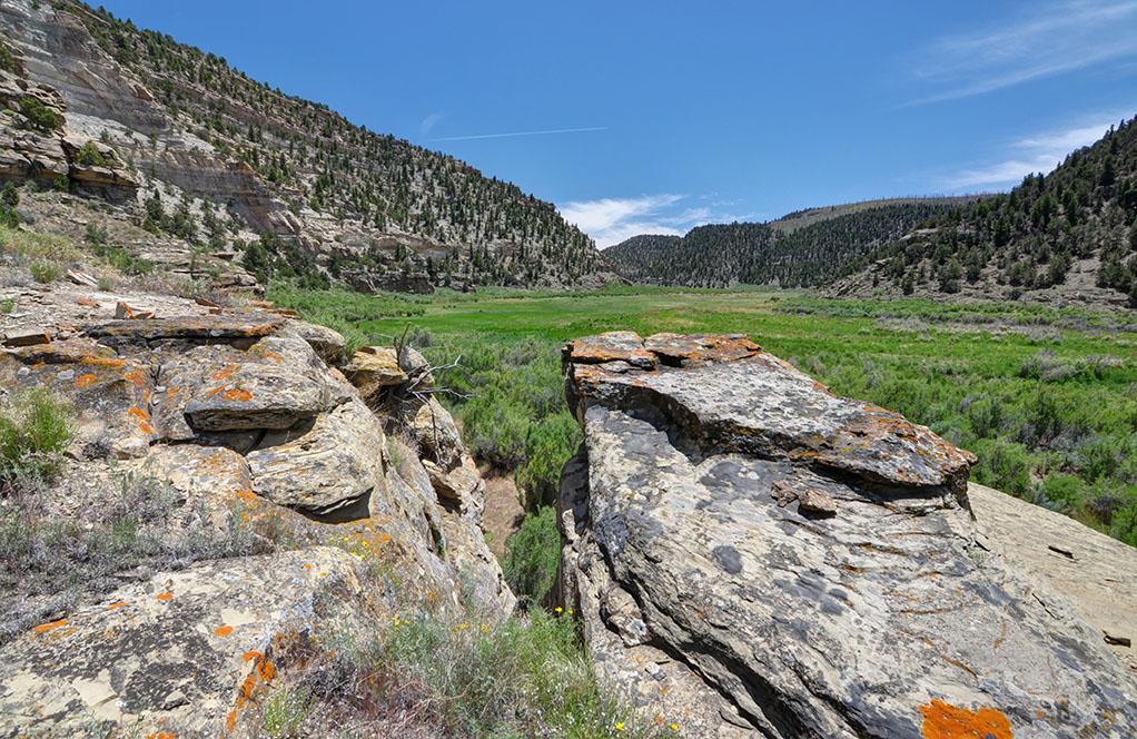 Bitter Creek propuso desierto