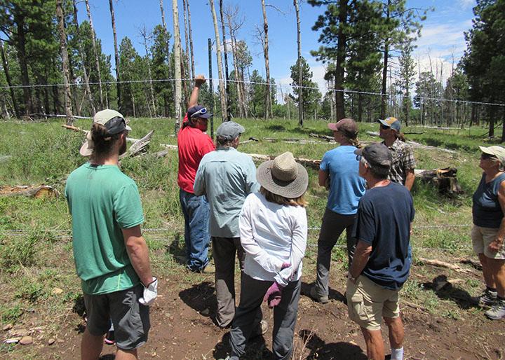 Elk Ridge Service Project