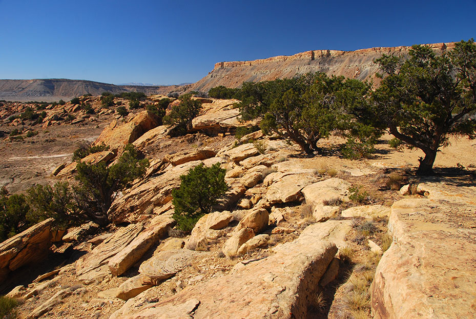 Eagle Canyon, San Rafael Swell (Ray Bloxham)