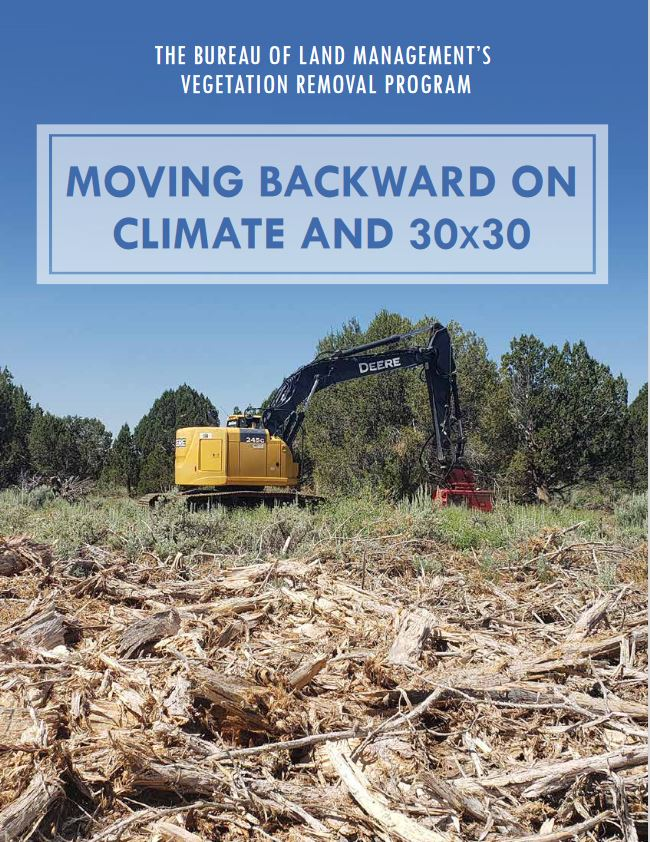 Climate and Veg Removal Report Thumbnail