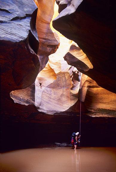 White Canyon Narrows